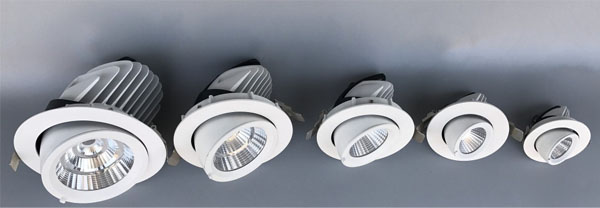Guangdong udhëhequr fabrikë,ndriçimi i udhëhequr,Trungu i elefantëve 50w përtokë Led downlight 1, ee, KARNAR INTERNATIONAL GROUP LTD
